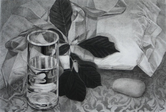 glass-water-leaves_still-life_charcoal-on-rives-bfk