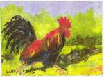 Dawn Lundquist: Roosters