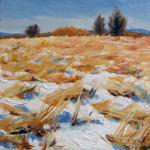 Takeyce Walter: Winter Landscapes